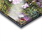 My Secret Iris Garden Acrylic print