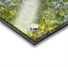 Landscape (302) Acrylic print