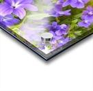Purple Flowers Photograph Acrylic print