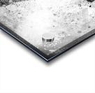 Monochrome Art EIFFEL TOWER  Acrylic print