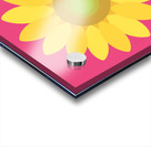 Sunflower (10) Acrylic print