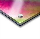 Color Burst - Flower Field Acrylic print