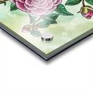 Botanical Watercolor Japanese Camellia Flower  Acrylic print