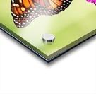 Monarch On Magenta Buddleia Acrylic print