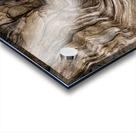 Banff Petrified Wood Acrylic print