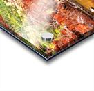 Waterhole - Ormiston Gorge Acrylic print
