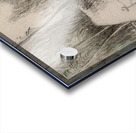 The Charcoal Burner's Hut Acrylic print
