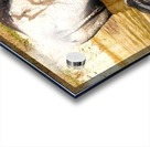 Water Buffalo Family Portrait Acrylic print
