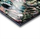 1569280931137 Acrylic print