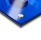 IMG_20190309_144914585_1569620398.8808 Acrylic print