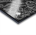Nova Greyscale Acrylic print