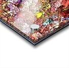 3D524C92 18E7 4413 9E11 A610601DBC38 Acrylic print
