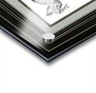 art dove frame Acrylic print