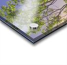Touching the Sky Acrylic print