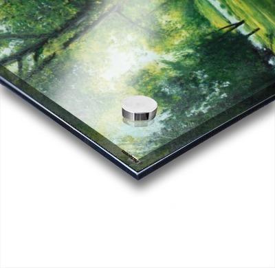 Arboretum at canal Acrylic print