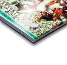 1967_College_Football_Sugar Bowl_Nebraska vs. Alabama_Tulane Stadium_Row One Brand Ticket Stub Art Acrylic print