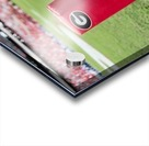 University of Georgia Football   Athens GA 3055 Acrylic print