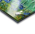 Irises by Van Gogh Acrylic print
