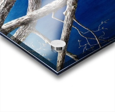Trees at Dusk Acrylic print