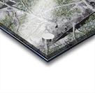 Snowdust in Spring Acrylic print