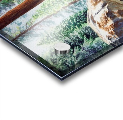 National Park Sequoia Acrylic print