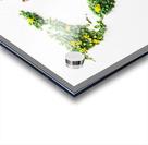 Light Continent Ciriel Acrylic print
