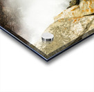 Rocky Mountain Rapids and Waterfalls 4 of 8 Acrylic print