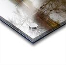 Beaver Pond ap 2357 Acrylic print
