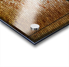 Interior Detail ap 2098 Acrylic print