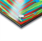 226394_169833853072751_7621715_n Acrylic print
