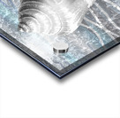 Silver Gray Seashell On Ocean Shore Waves And Rocks VII Acrylic print
