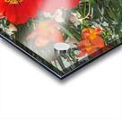 The Flower Family Acrylic print