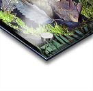 Mossy Stump Acrylic print
