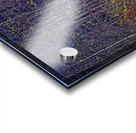 Weathered Fence Posts Acrylic print