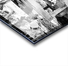 300s 1626000072.1251 Acrylic print