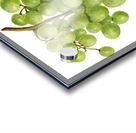 Green Grapes Wall Decor Vintage Botanical Poster Kitchen Art Acrylic print