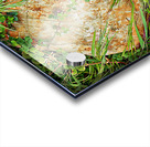Brown Sandstone Rock With Grass Acrylic print
