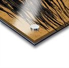 Precious Metals - Concept Art 1 - Gold Acrylic print