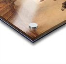 Cloister In Boxmeer Sun Acrylic print