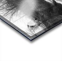 Frozen Wetlands Acrylic print