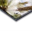 Palm and tropical beach Acrylic print