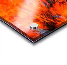 The Flock Orange Acrylic print