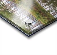 Sky, Water & Trees Acrylic print