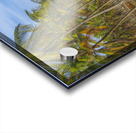 Earth Topical Road Porto Galinhas Brazil 2 Acrylic print