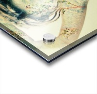 Double Exposure Serie Acrylic print