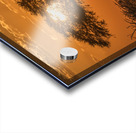 Silhouette of acacia tree at orange sunset; Botswana Acrylic print