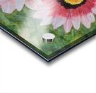 Two Daisies Acrylic print