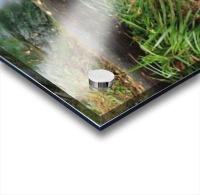 Ireland; Waterfall Acrylic print
