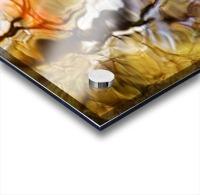 Elementals, Massachusetts, Seekonk, Caratunk Wildlife Refuge, Colorful Glassy Reflections On Water. Acrylic print