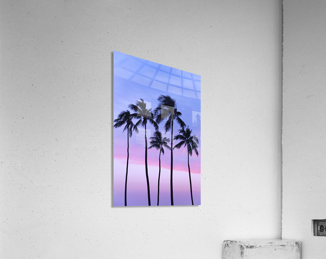 Five coconut palm trees in line with cotton candy sunset behind; Honolulu, Oahu, Hawaii, United States of America  Acrylic Print
